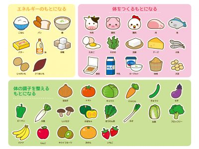 三色食品群 小学校 家庭科