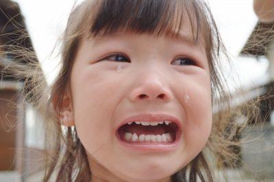道志川 川遊び スポット 泣く 子供