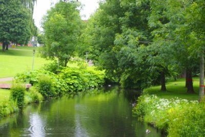 アンデルセン 公園 水遊び 川 木