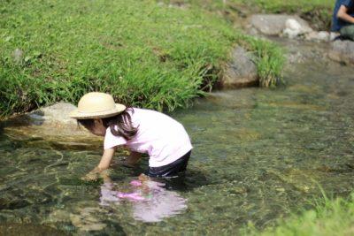 川遊び 女の子 魚