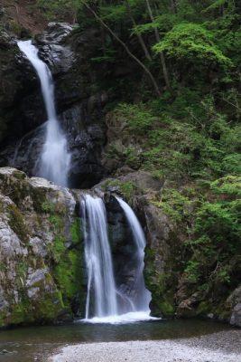上野村 川遊び 穴場 滝 川