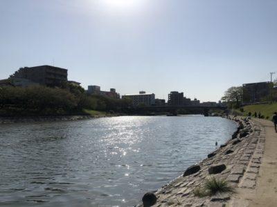 広島 川遊び 太陽 川沿い
