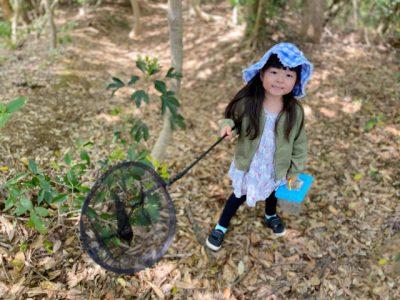 虫取り 子供 効果 森 虫取り網