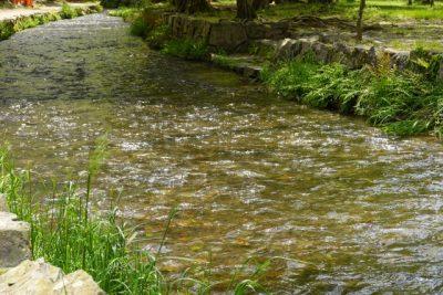 川遊び スポット 小川 川の流れ
