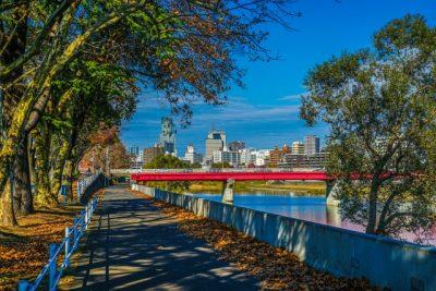 川遊び スポット 宮城 木