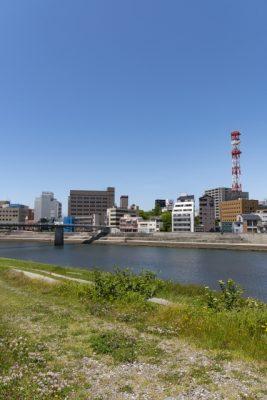 静岡 川遊び 穴場 河川敷