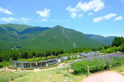 兵庫 川遊び ラベンダー 山