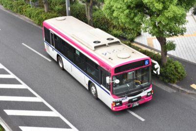 宝塚 西谷 川遊び バス 行き方