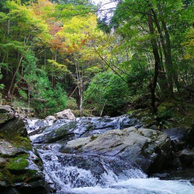 上越 川遊び 滝