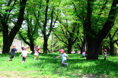 神戸 川遊び 森 子供 かけっこ