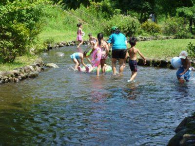 川遊び 家族 水着