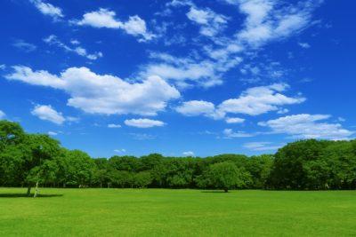 関西 子供 公園 青空