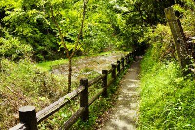 群馬 川遊び 森林公園